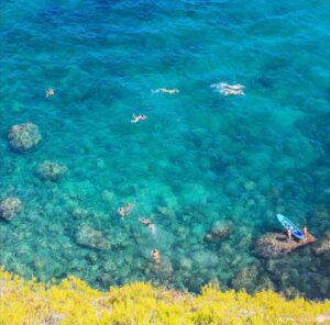 タバルカ島